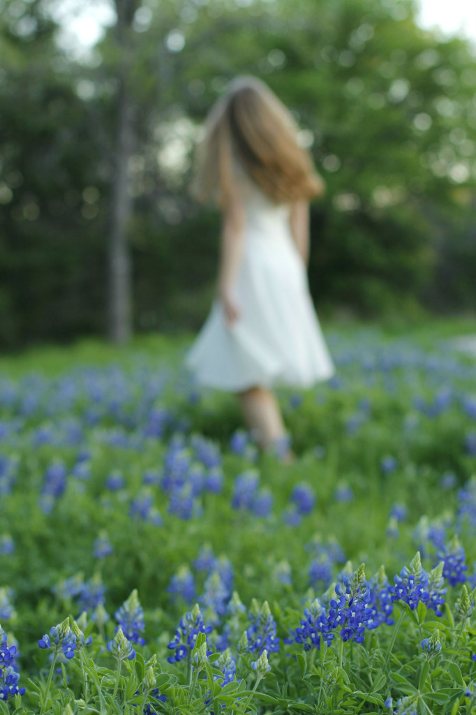 Blue bonnet austin