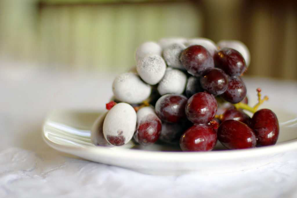 Frozen Grapes: simple, delicious summer snack